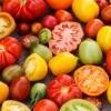 Savez-vous qu'il existe plusieurs milliers de variétés de tomates différentes et que nous en consommons moins de 10 ?