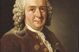 Sur les traces de Linné