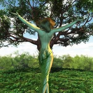 Visite gratuite du Parc «Les arbres et la mythologie»