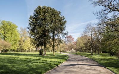Week-end Parcs & Jardins de Wallonie au Domaine de Mariemont les 1 et 2 juin 2019
