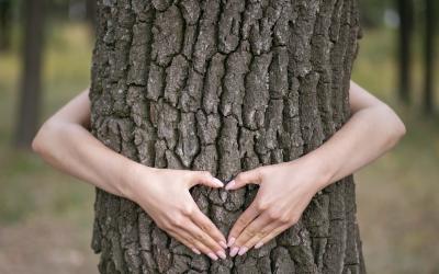 Aux arbres citoyens !