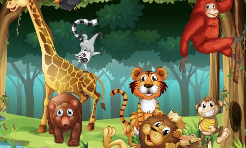 Voyage avec les animaux du monde