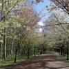 La Visite du Parc du 11 avril
